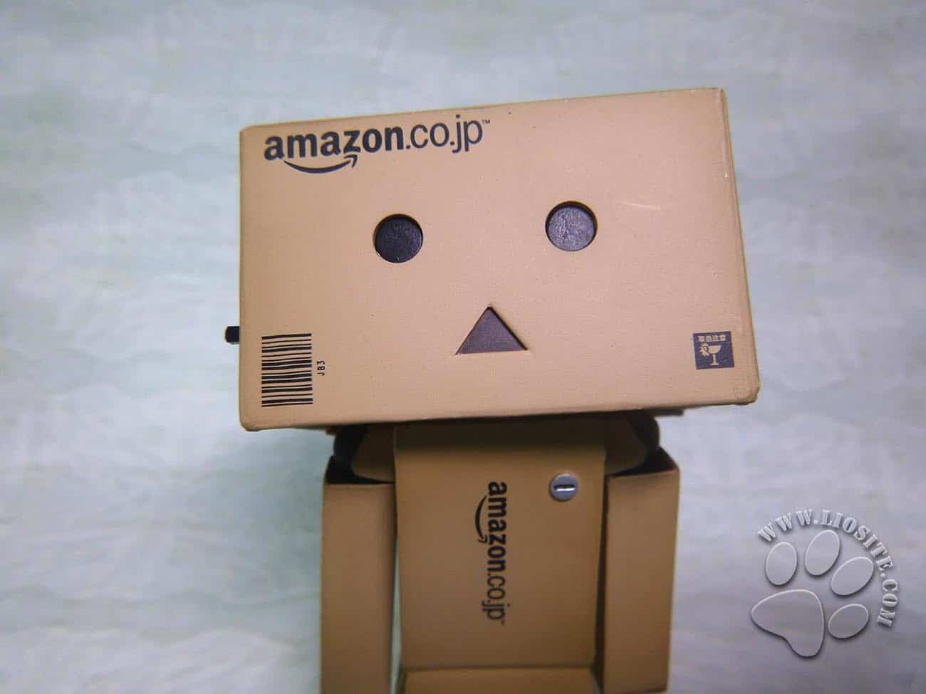 Foto di Amazon Box Danbo